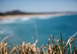 Point Perry, Coolum